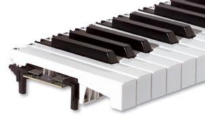 TP9_piano_2.jpg